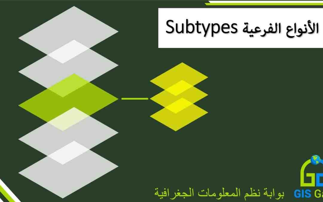 الأنواع الفرعية Subtypes