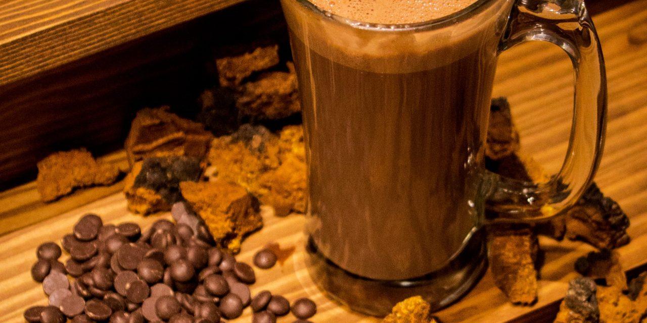 https://i1.wp.com/gisement.ca/wp-content/uploads/2016/10/chocolat-chaud-chaga-scaled.jpg?resize=1280%2C640&ssl=1