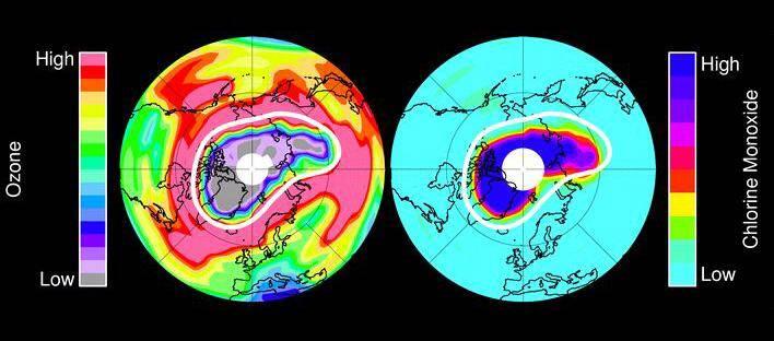arctic ozone