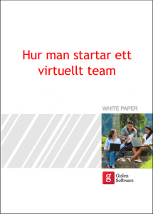 Virtuellt-team3