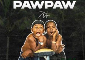 Zlatan – Unripe Pawpaw