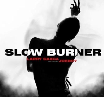 Larry Gaaga – Slow Burner Mp3 Download