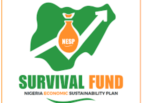 FG MSME Survival Fund New Registration Portal