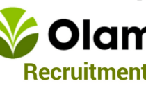 Olam Nigeria Limited Job Recruitment