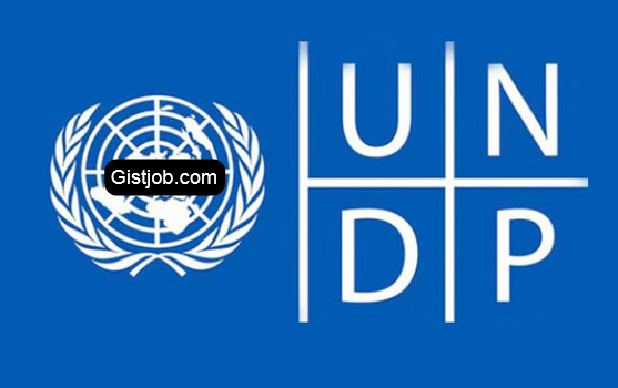 United Nations Development Programme (UNDP) Job Recruitment