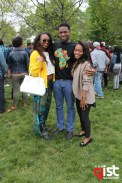 memorial day picnic chicago 2013