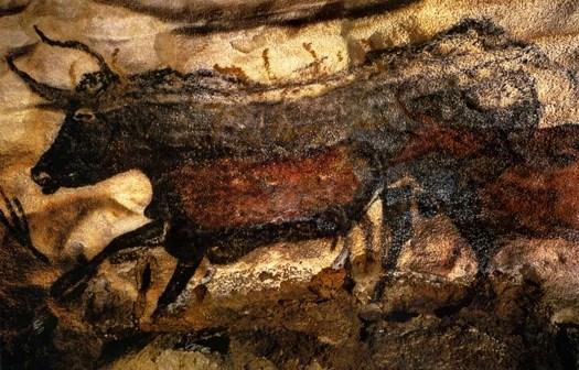 Lascau cave painting