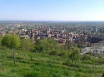 Obernai, région de Strasbourg