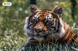 Le Zoo des 3 Vallées