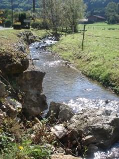 Un cours d'eau