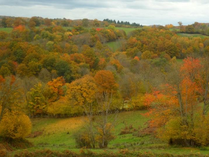 Les Combrailles en automne