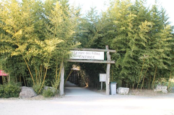 Le Parc des Félins se trouve à quelques minutes de la maison d'hôtes