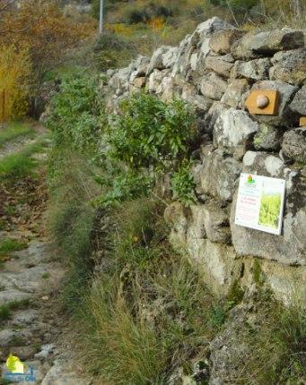 Gite en Ardèche méridionale
