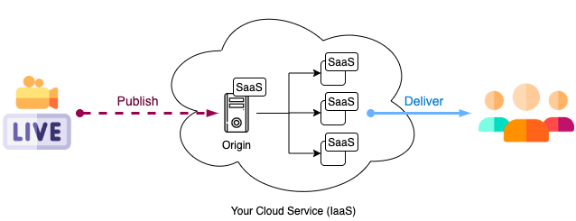 Live Streaming Architecture using SaaS