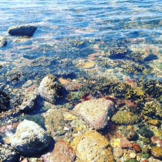 Isle of Cumbrae Water