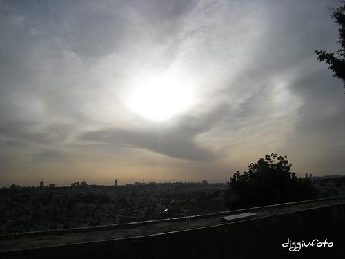 Una colomba ci ha accolto nel cielo a Gerusalemme