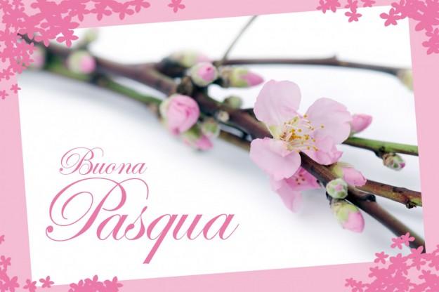 fiori-e-buona-pasqua