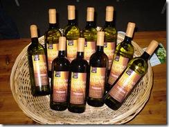 Campo_Libero_brindisi_bottiglie