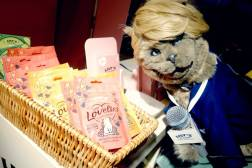 Hanging Out at Crufts With Lily's Kitchen and Cat Balding   And Win a Hamper of Cat Food!   Birds and Lilies E:16/04