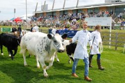 Lincolnshire Show Family Ticket Giveaway – Family Clan Blog