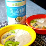 Primal Kitchen Collagen Fuel – Smoothie RECIPE – Tried It Tuesday