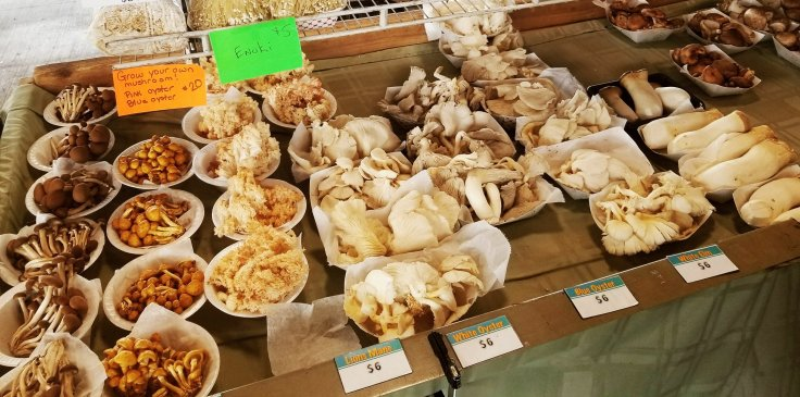 Give and Grow Mushrooms LLC offers a wide variety of exotic, gourmet mushrooms at Eastern Market