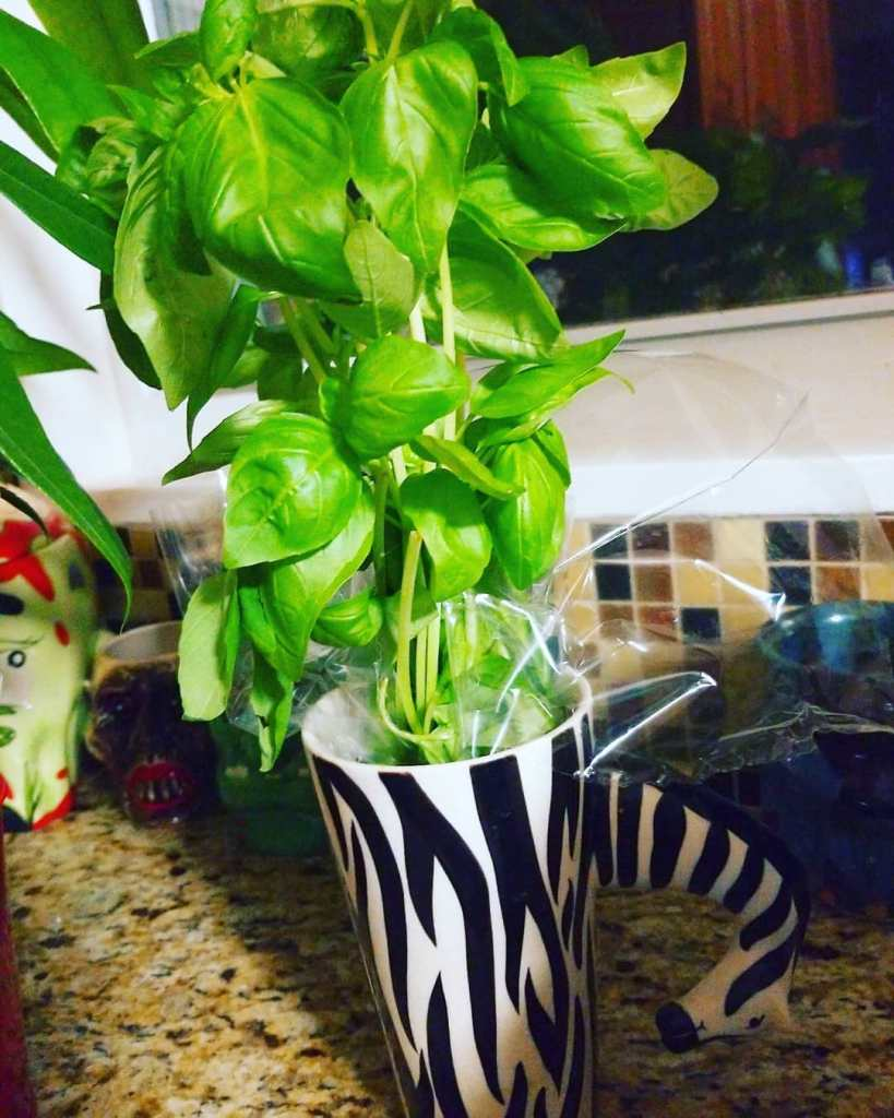 Fresh basil is an absolute necessity with this Italian Drunken Noodles recipe