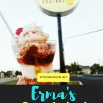 Erma's Frozen Custard REVIEW – St. Clair Shores Michigan – A Trio Of Frozen Custard Parfaits