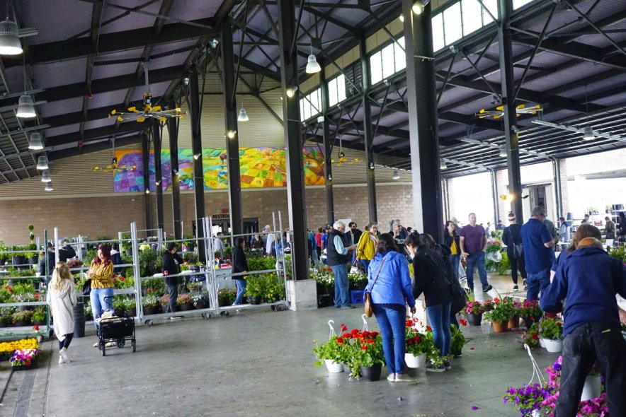 Eastern Market has several sheds filled with flowers, plants, and fresh fruits and vegetables!