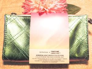 Horizon Light Brush Collection bag