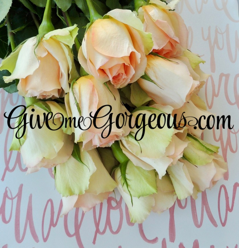 GiveMeGorgeous pink roses