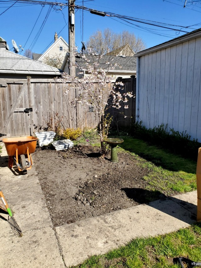 A photo of the garden area in progress.