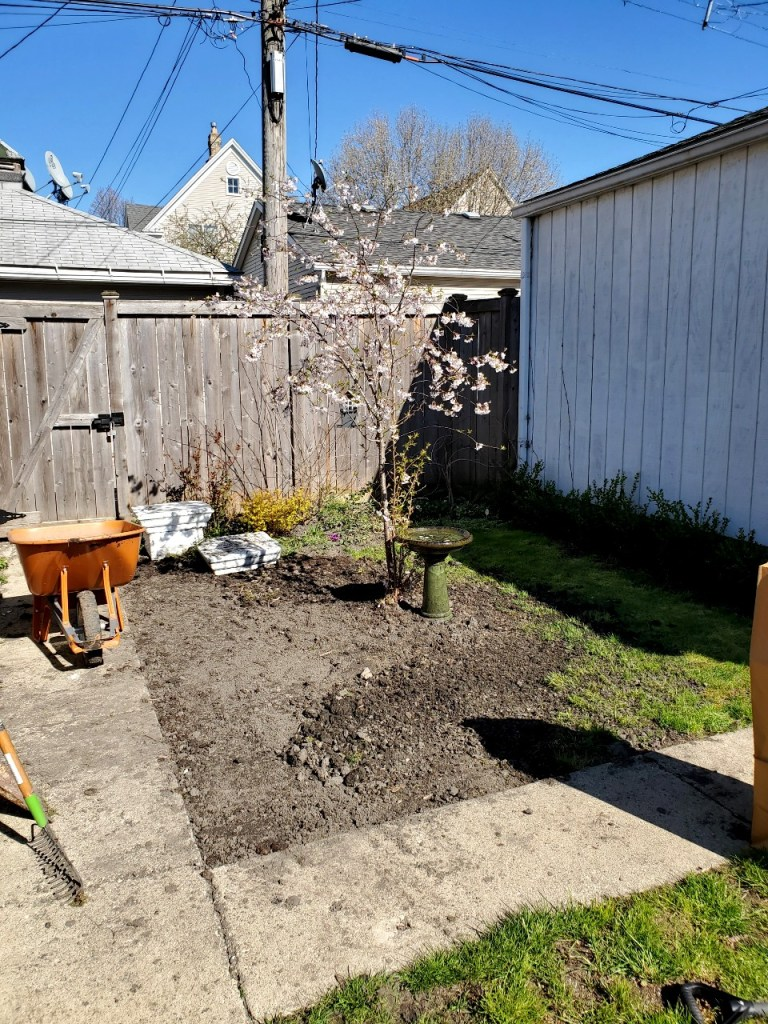 A photo of the garden area in progress.