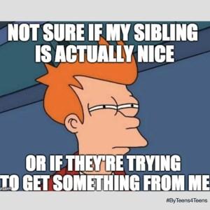 Meme_Sibling_2018.4.28