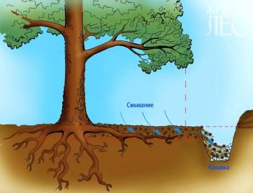Удаление поверхностного (загрязненного) слоя почвы при помощи насоса.