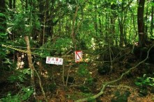 Aokigahara-fores-suicide-10