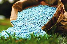 Применение минеральных удобренй повышает устойчивость растений