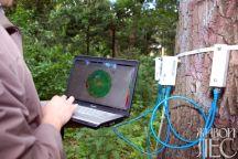 Арботом - импульсный тамограф, применяемый для диагностики состояния деревьев