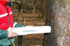 Резистограф - прибор для диагностики скрытых гнилей и пустот в стволах деревьев