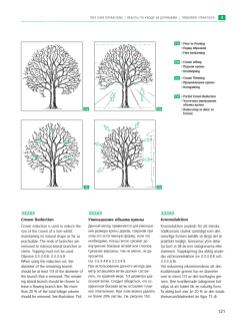 справочник European Tree Worker