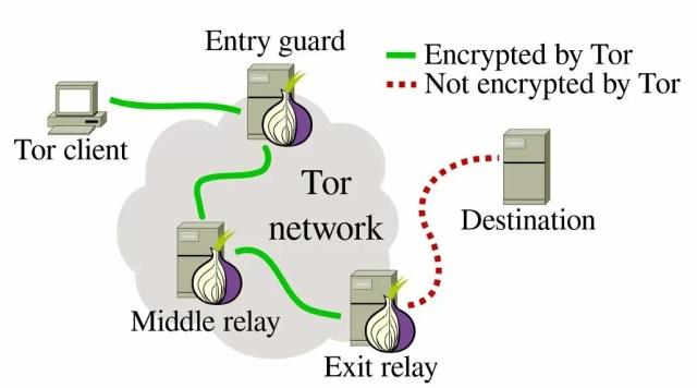Funzionamento della rete Tor