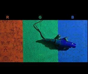 chameleon mimic