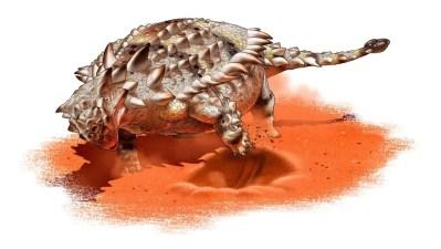 Um anquilossauro vai escavando uma depressão defensiva . Ilustração: Yusik Choi