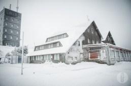 schnee (29 von 38)