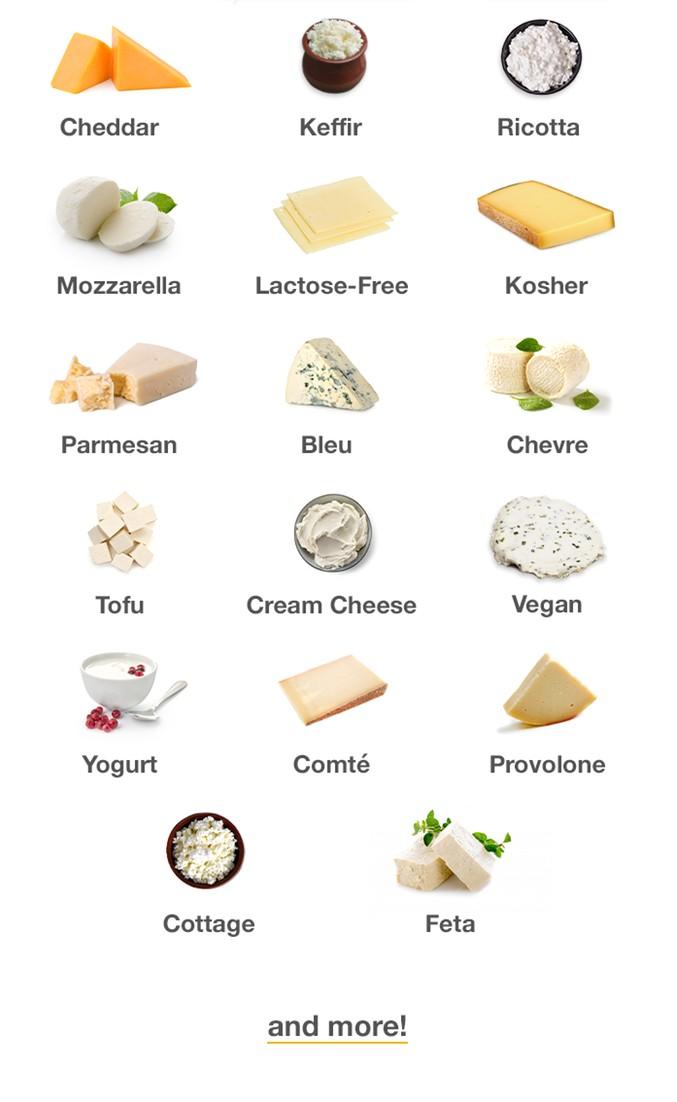 Jenis-jenis Keju