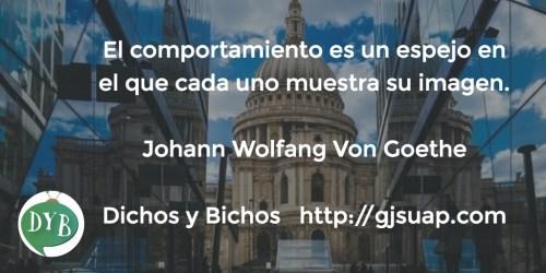 Comportamiento - Von Goethe