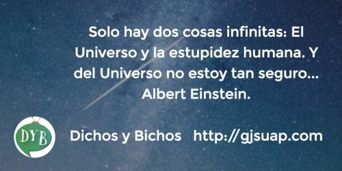 Estupidez - Einstein