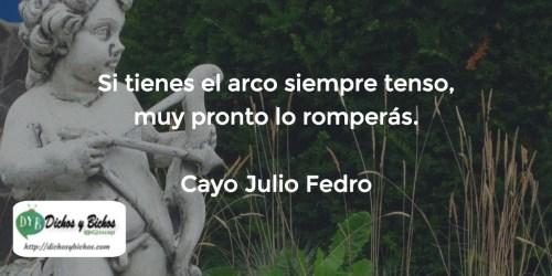 Arco - Fedro