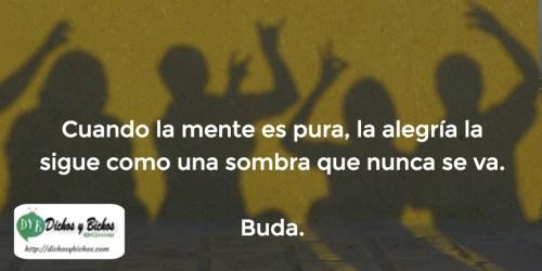 alegría - Buda