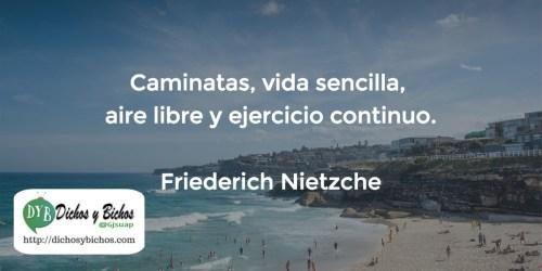 Vida - Nietzsche